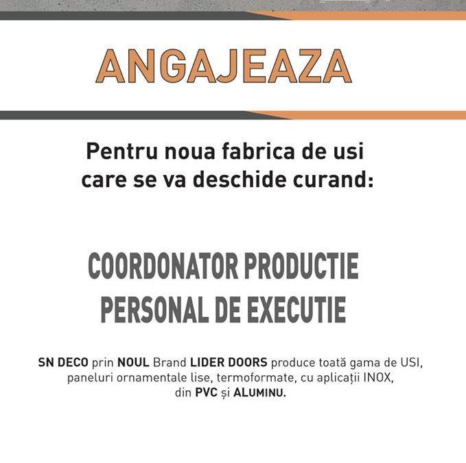 Coordonator productie si personal de executie