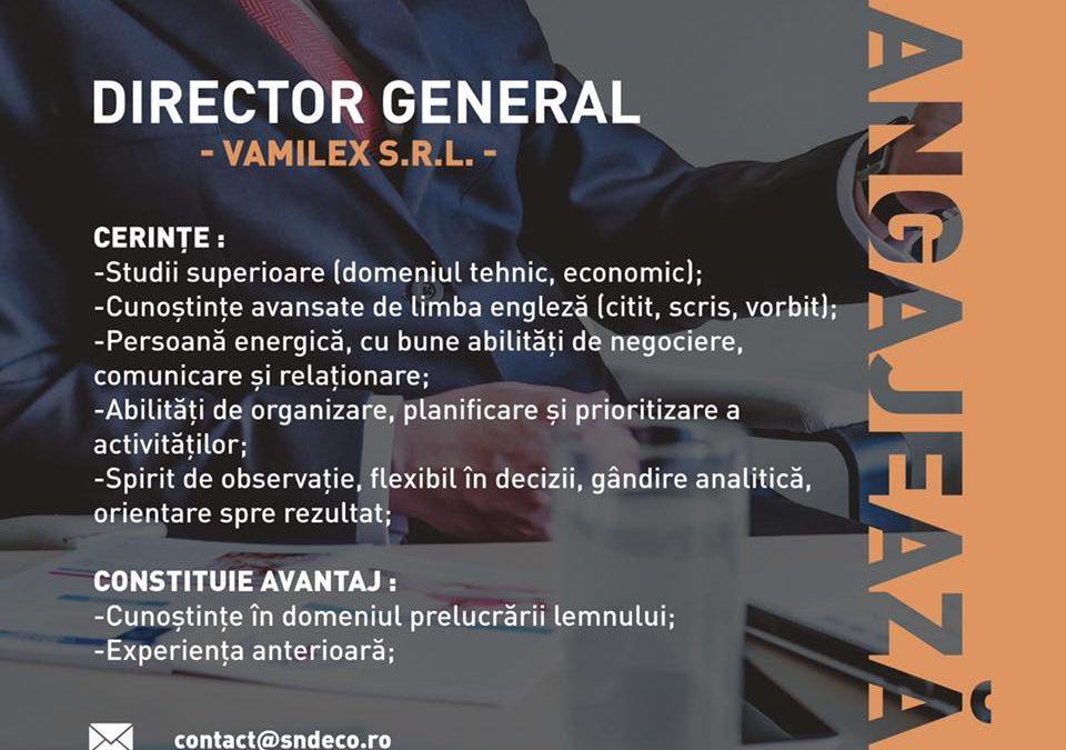 Valimex angajeaza director general